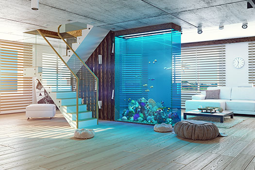 6 Things You Shouldn't Do When Caring for an Aquarium in San Diego, CA