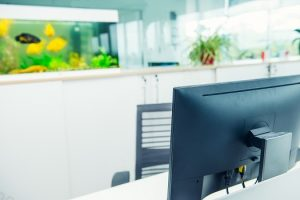 4 Benefits of Having an Aquarium in Your Office in San Diego, CA