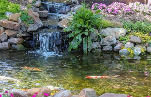 Do Waterfalls Aerate Koi Ponds San Diego, CA