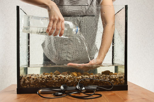 Should You Use Bottled Water in Fish Tanks San Diego, CA