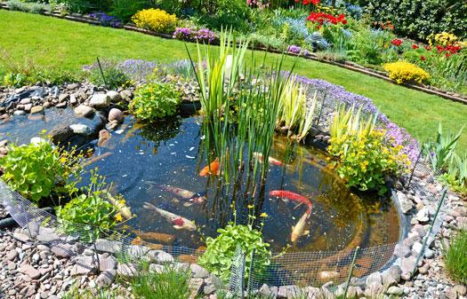 DIY Additions for Koi Ponds San Diego, CA
